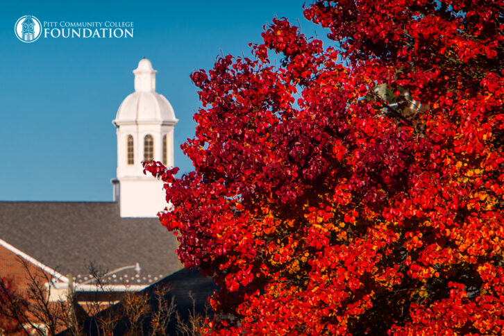 Bright red fall leaves in the foreground with the Warren Cupola in the background.