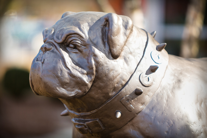 PCC Bulldog sculpture on main campus.