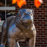 PCC Bruiser bulldog mascot sculpture on main campus.